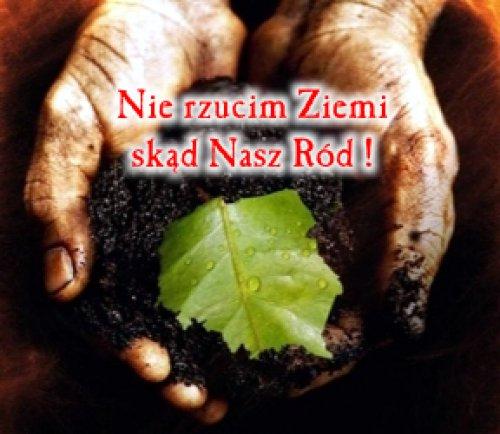 www.komasowani.pl